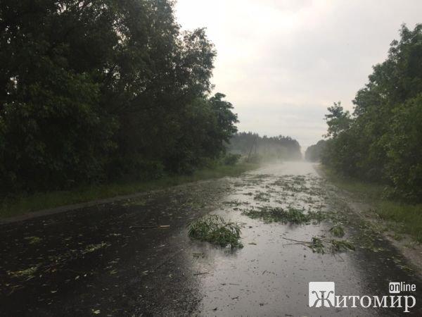 В одному з районів Житомирщини блискавка підпалила будинок, де жила родина з 9 дітьми. ФОТО