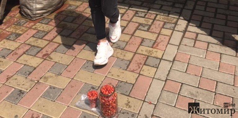 Сьогодні на Житньому ринку у Житомирі продають справжні лісові суниці. ФОТО