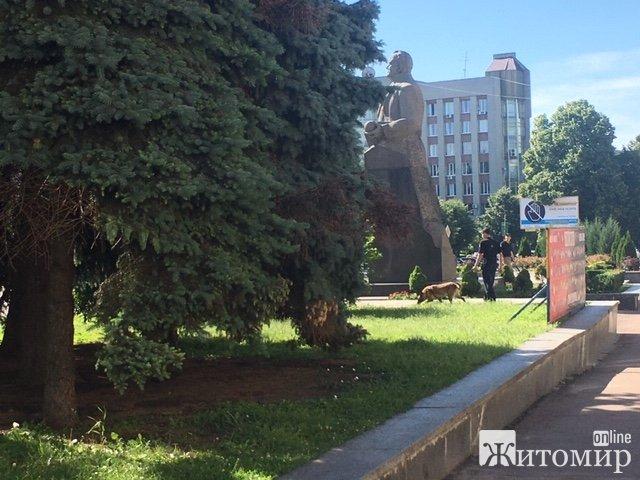 У Житомирі кінологи перевіряють територію біля обласної ради. ФОТО
