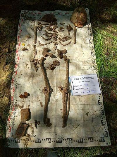 На Житомирщині знайшли останки перерубаного тіла солдата часів Другої світової війни