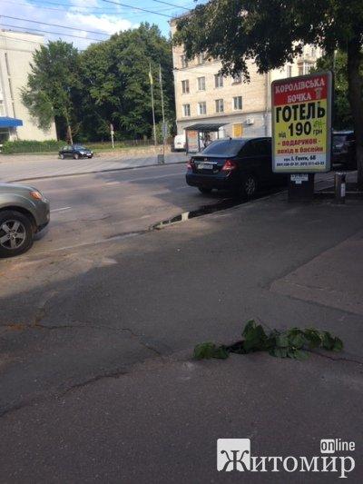 Житомиряни ризикують поламати ноги на тротуарах прямо в центрі міста. ФОТО