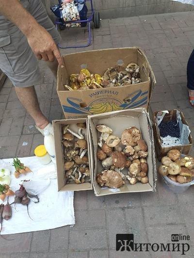 На Житньому ринку у Житомирі продають гриби на різний смак. ФОТО