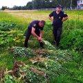 """Поліція почала """"полоти"""" городину жителів Житомирської області. ФОТО"""