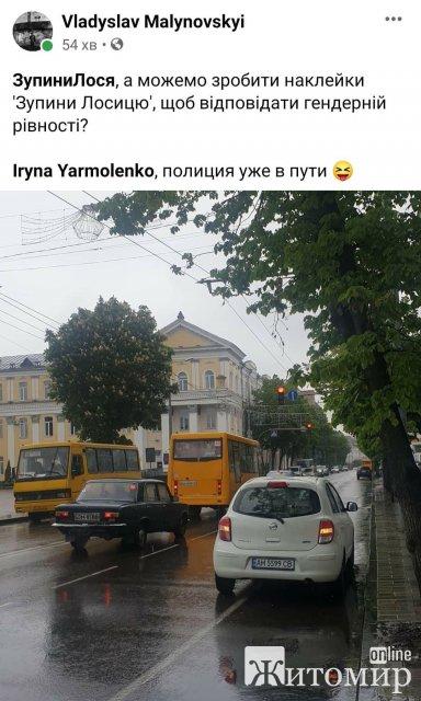 """Житомирська депутатка, яка """"полюбляє"""" порушувати ПДР, в декларації вказала мамину автівку та страхові виплати"""
