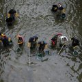 У Житомирській області можуть зайнятися очищенням річок