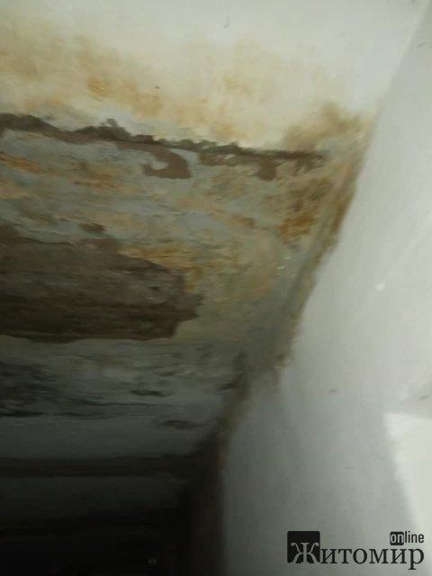 Сирість, мокра та аварійна стеля - бідкаються жителі одного в під'їздів у Житомирській області