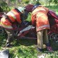 На Житомирщині в ДТП загинули троє дорослих та дитина. ФОТО