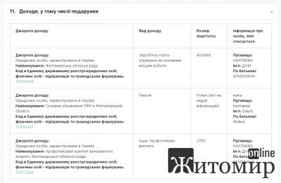 Декларація працівниці Житомирської обласної ради