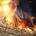 У селі Житомирської області малюк підпалив сіно біля колишньої конюшні