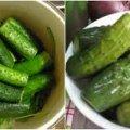 Хрумкі малосольні огірки, які можна їсти вже наступного дня
