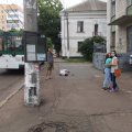 На зупинці в центрі Житомира лежить непорушно чоловік. ФОТО