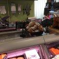 """Житомиряни сьогодні можуть поласувати іспанськими пончиками """"чуррос"""". ФОТО"""