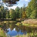 У річці на Житомирщині потонув 9-річний хлопчик