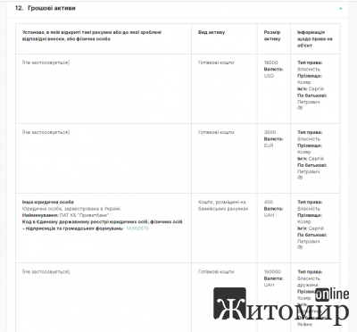 Декларація начальника управління внутрішнього аудиту Житомирської ОДА за 2019 рік. ФОТО