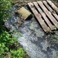 На околиці Житомира невідомі скидають каналізаційні відходи у канал біля будинків