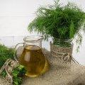 Заготівля зі стебла кропу на зиму: дуже ароматна і корисна