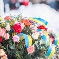 У Житомирі День Конституції проведуть онлайн, але від покладань квітів не відмовляться