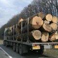На Житомирщині затримали вантажівку з деревиною без документів