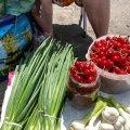 На Житньому ринку у Житомирі вже продають перші місцеві вишні. ФОТО