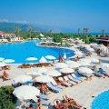 Житомирянам розказали, куди цього літа можна планувати відпустку
