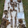 На глибині 80 см у Житомирській області пошуківці знайшли останки солдата. ФОТО