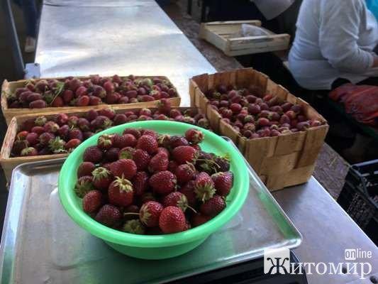По чому сьогодні полуниця на Житньому ринку у Житомирі? ФОТО