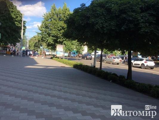 Транспортний колапс у центрі Житомира. ФОТО