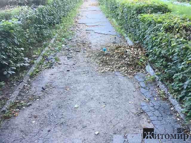 Хто наведе порядок із тротуарами у Житомирі? ФОТО