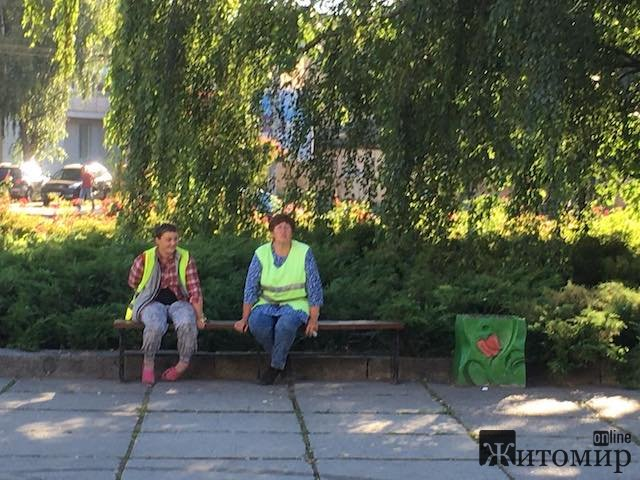 Що робив сьогодні вранці житомирський «Зеленбуд». ФОТО