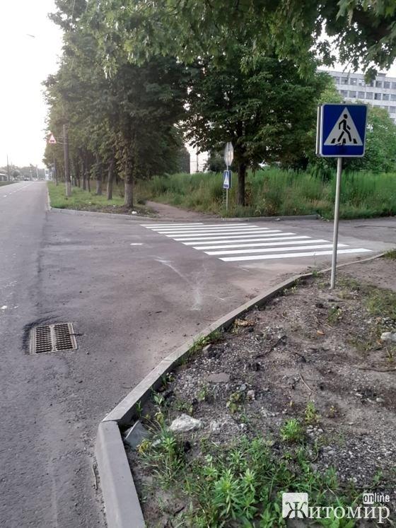 Дорожня розмітка на вулиці Корольова у Житомирі. ФОТО