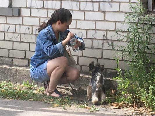 Як ви думаєте, чим зараз займається прекрасна житомирянка на вулиці Бориса Тена? ФОТО