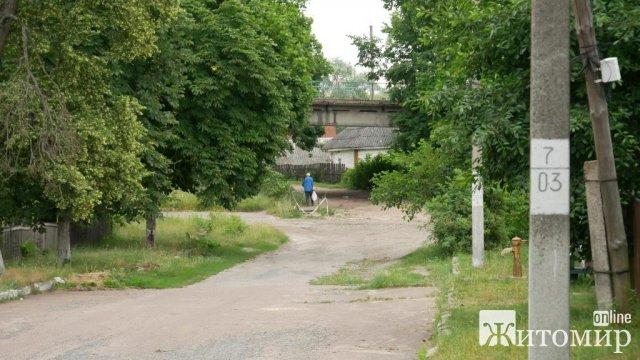 У селищі Житомирської області чоловік металевою палицею вбивав пса, нібито через курей. ФОТО