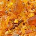 В Житомирской области конфисковали 9,2 тонны незаконно добытого янтаря
