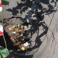 Пастка для автомобів на вулиці Великій Бердичівській у Житомирі. ФОТО
