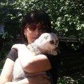Через 2 недели после взрыва на Позняках на развалинах нашли кошку: отсиделась за диваном. ФОТО