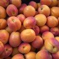 На ринках міста з'явилися українські абрикоси. ФОТО
