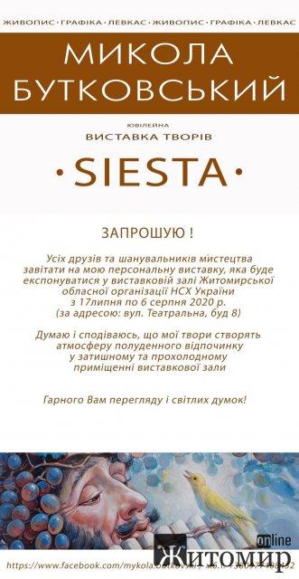 """Житомирський художник запрошує на виставку """"Siesta"""""""