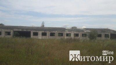 Не відбувся аукціон на будівництво ферми в Радомишльському районі