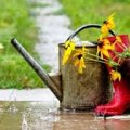 В Украину пришло похолодание: с дождем, грозой и градом
