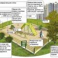 У Житомирі з'явиться тренувальний майданчик для собак