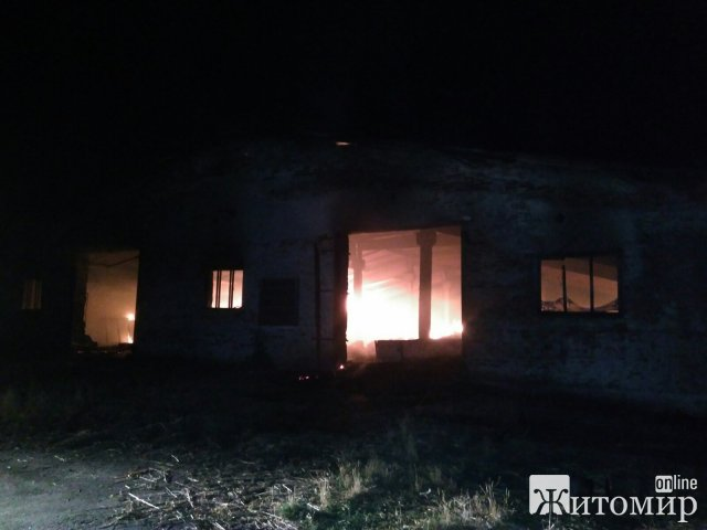 Через блискавку в селі Житомирської області загорілася господарча будівля. ФОТО