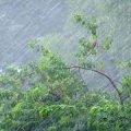 Синоптики попередили про підвищення рівня води в річках і сильні зливи