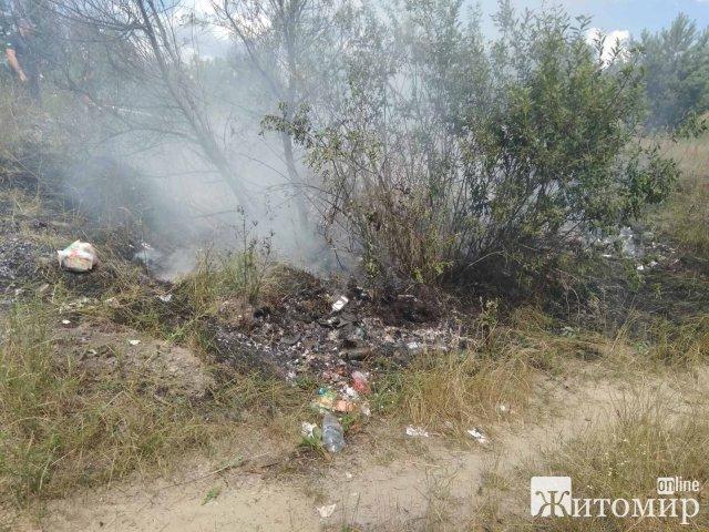 Двічі за добу в центрі Житомира горіло сміття. ФОТО
