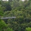 На крыле моста в житомирском парке сидел парень и ругался с девушкой
