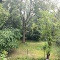 У Житомирі пройшов тропічний дощ. ВІДЕО