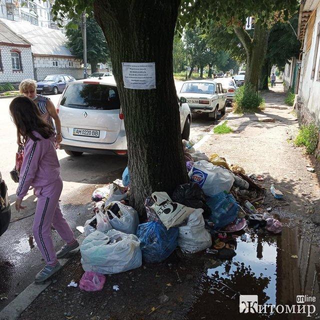 Гори сміття на тротуарах по вулиці Небесної сотні в Житомирі. ФОТО