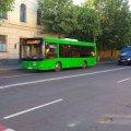 З початку року пасажирським транспортом в Житомирській області скористались на понад 40% менше осіб, ніж торік за той самий період