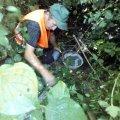 Житомиряни поскаржились екологам на скид каналізаційних стоків у дренажний канал: сморід та фекалії. ФОТО