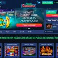 Описание услуг для полноправных гэмблеров от азартного клуба Космолот