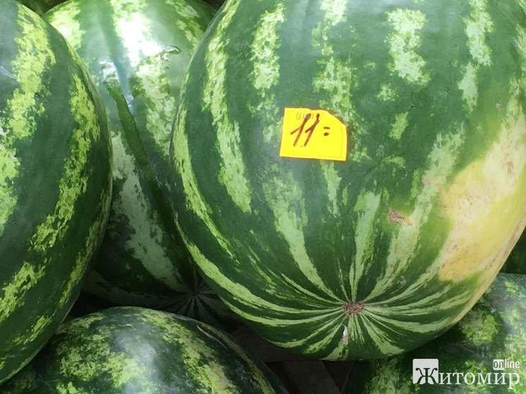 Чому у Житомирі на ринку на вулиці Довженка найдорожчі ціни? ФОТО